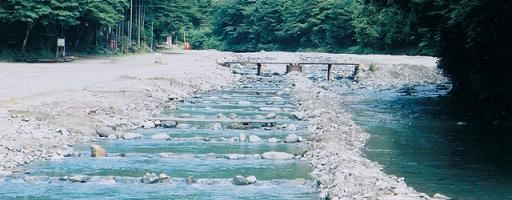 早 戸川 国際 マス 釣り場