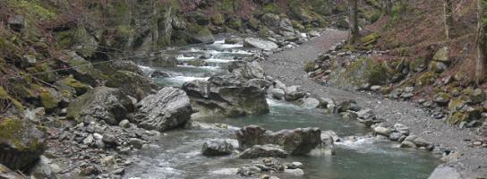 川 釣 血 観光 場 渓流 大